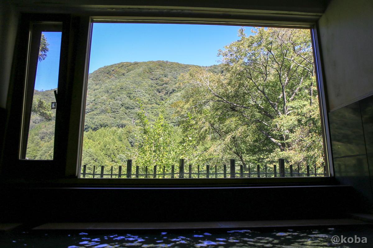 窓からの景色 開運の湯(かいうんのゆ)日帰り入浴 栃木 日光 ブログ