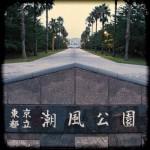 お台場散歩 潮風公園(南側)