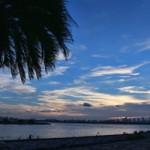 葛西臨海公園 散歩