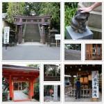 愛宕神社 出世の石段「むちゃぶり」 -東京パワースポット-