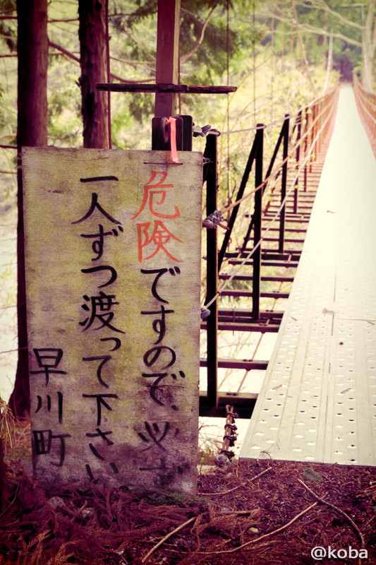 04 山梨県南巨摩郡早川町 つり橋
