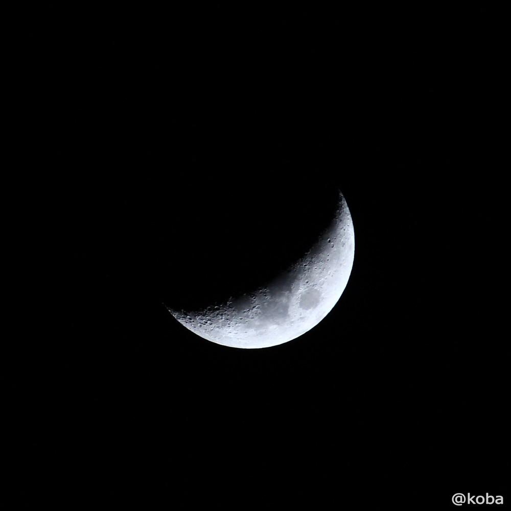 2015-03-25_18時31分 正午月齢(4.7)