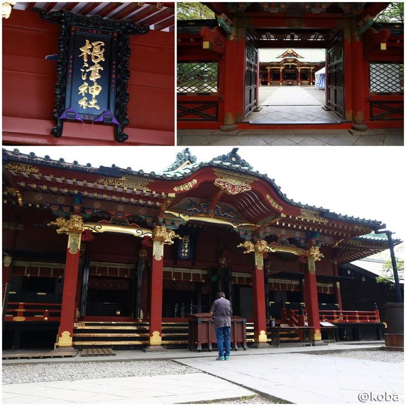 08 根津神社 社殿