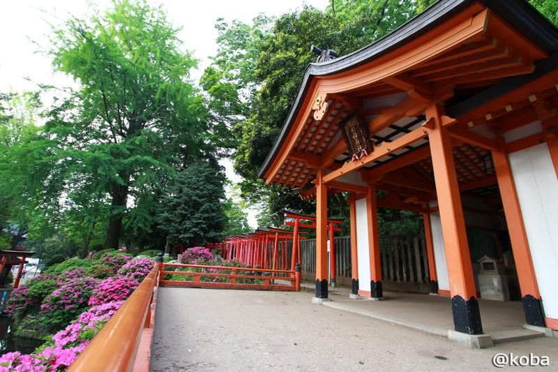 02 乙女稲荷神社 根津神社