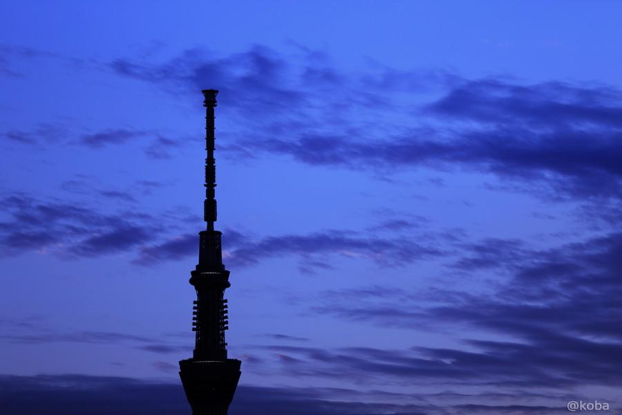 03 TOKYO SKYTREE 葛飾区 四つ木