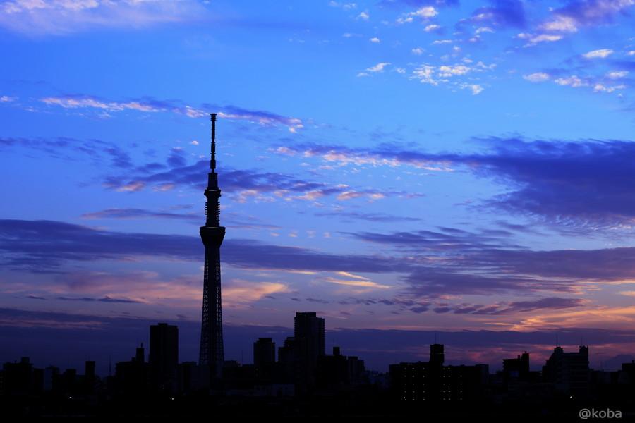 01 TOKYO SKYTREE 葛飾区 四つ木