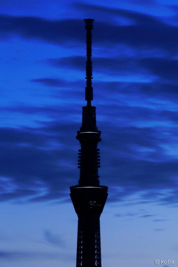 05 TOKYO SKYTREE 葛飾区 四つ木 02