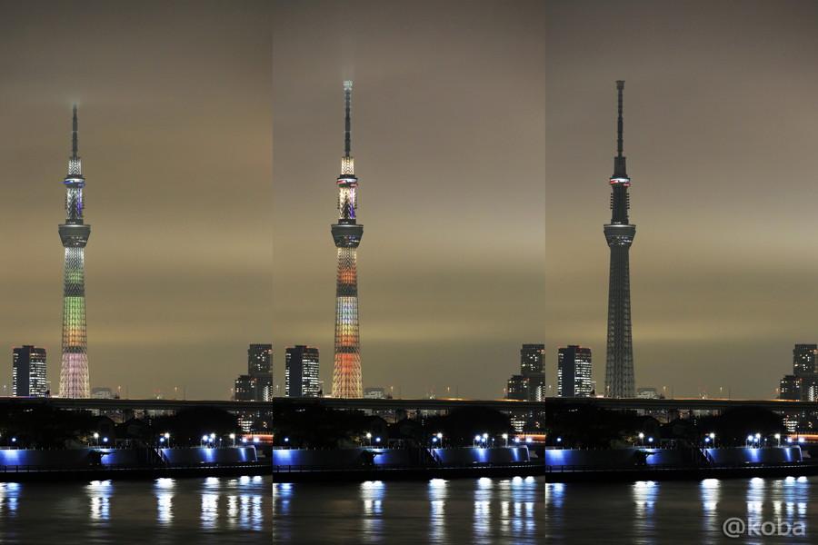 2015-11-20_東京スカイツリー(和食の日)