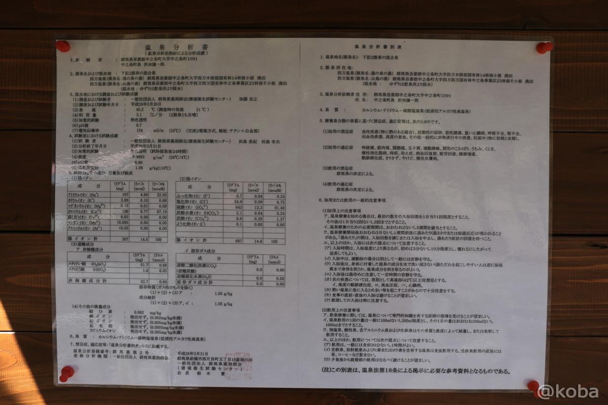 04温泉分析書