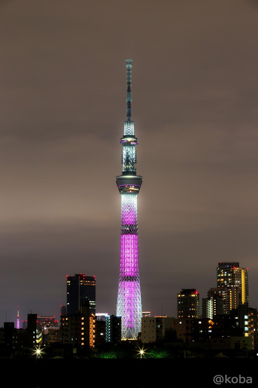 東京スカイツリーと東京タワー「ピンクリボン」東京都葛飾区東四つ木│こばフォトブログ
