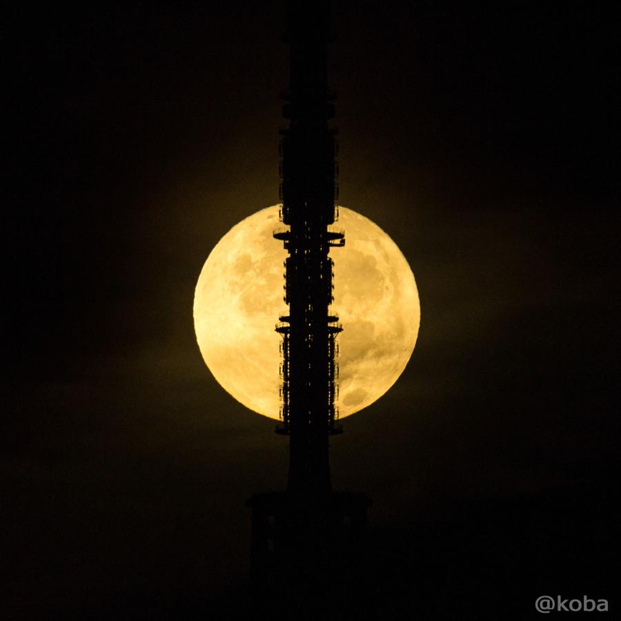 月と東京スカイツリー kiss x5│こばフォトブログ