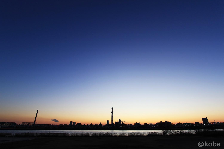 スカイツリー 四つ木 ブルーモーメント「東京の絶景」こばフォトブログ