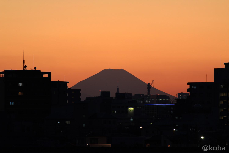スカイツリー 四つ木 富士山 「東京の絶景」こばフォトブログ