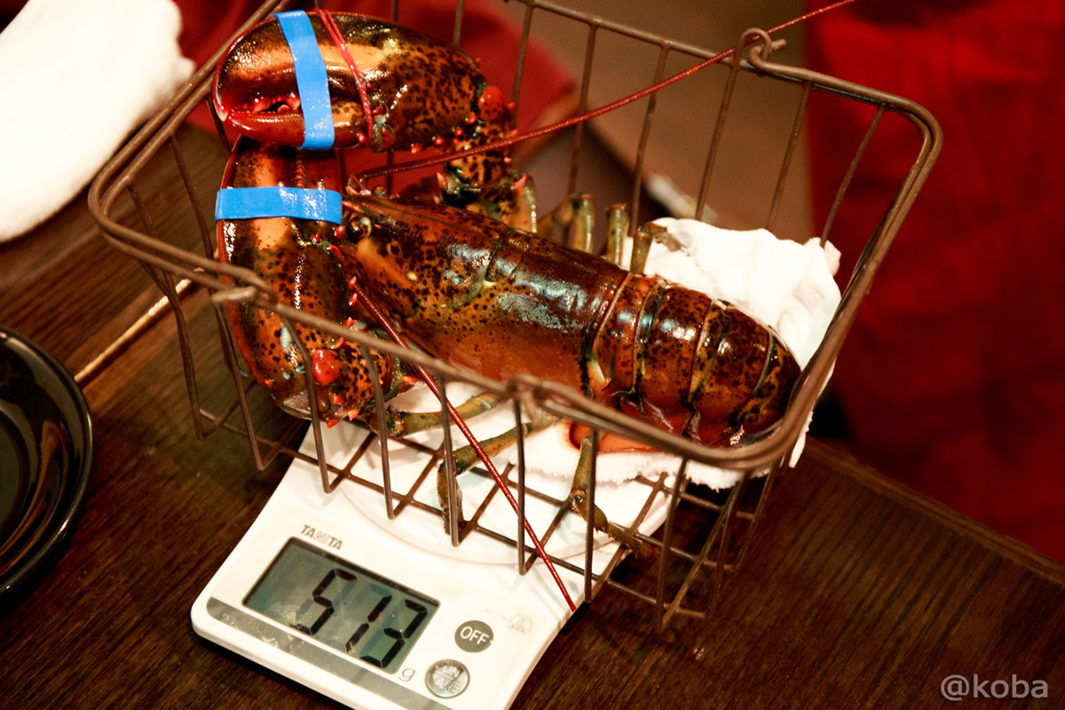活オマール海老 値段グラム7円 量り売り 東京駅 yaesu 海老バル│こばフォトブログ