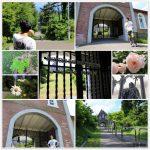 トラピスト修道院 「初夏の緑」