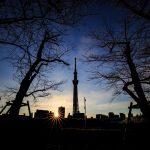 朝の東京スカイツリー「日の出とシルエット」隅田川沿い