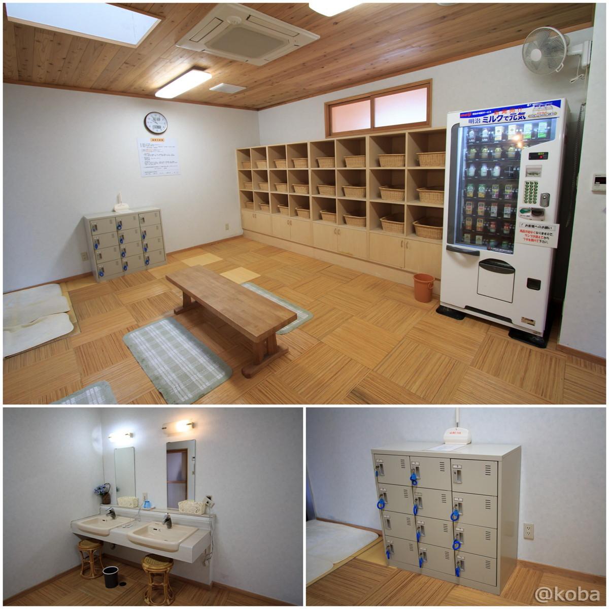 脱衣場 洗面 ドライヤー 飲み物自販機 無料ロッカー 休石温泉 太田屋旅館 (やすみいしおんせん)