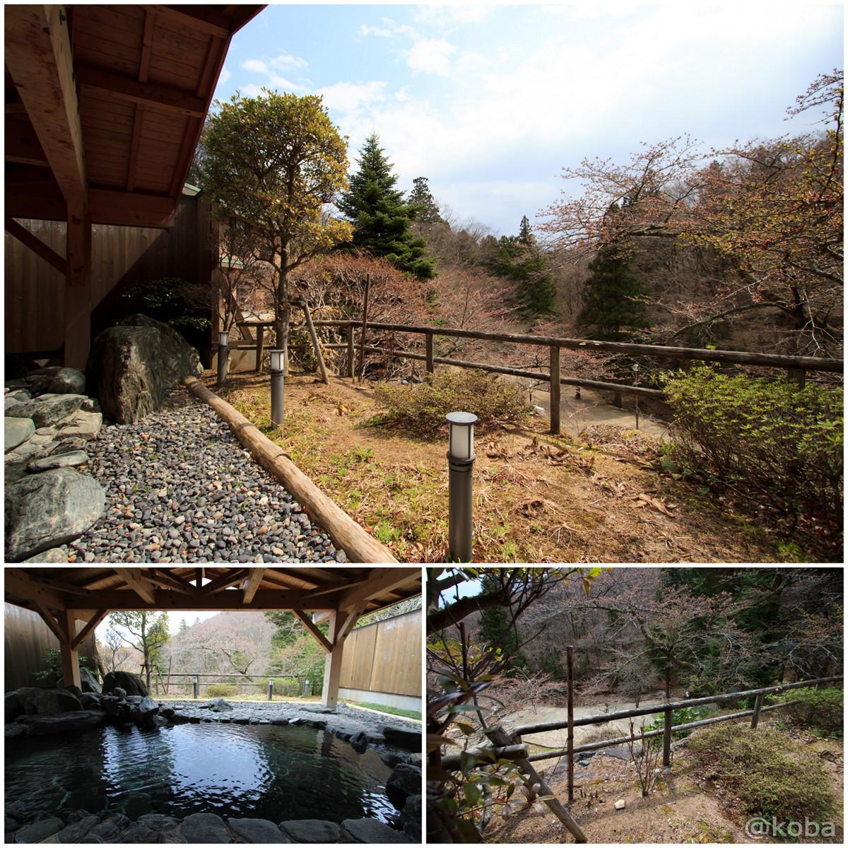 外風呂からの景色 休石温泉 太田屋旅館 (やすみいしおんせん)