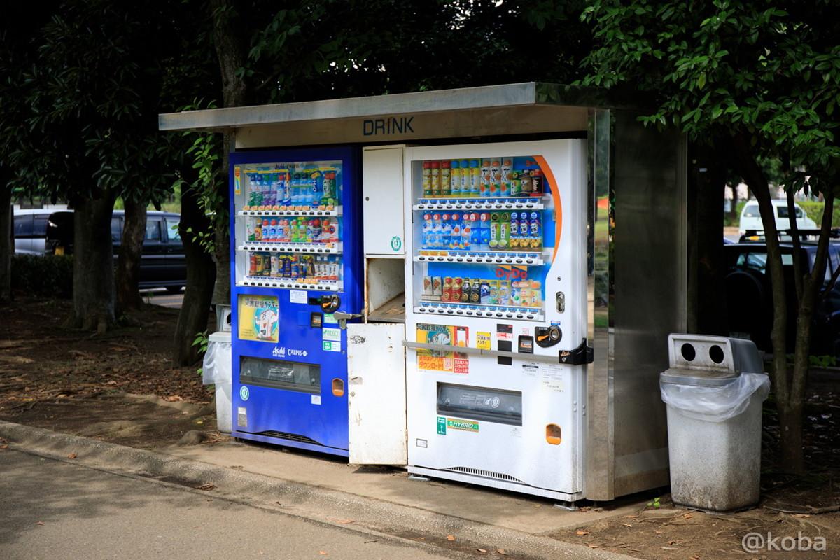 自動販売機│木場公園