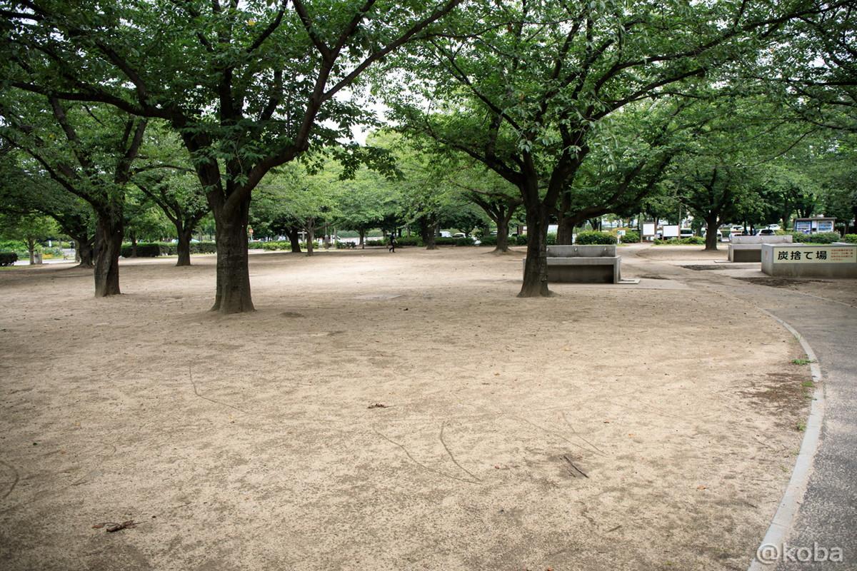 バーベキュー広場の写真│施設の写真│木場公園