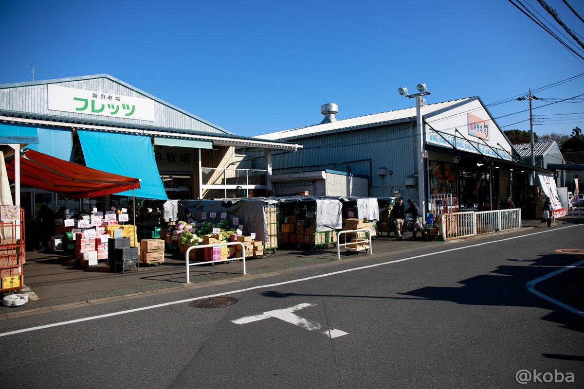 外観 新鮮市場の写真│魚屋旬(さかなやしゅん)│魚市場│牡蠣祭り│東京都練馬区│谷原4丁目│こばブログ