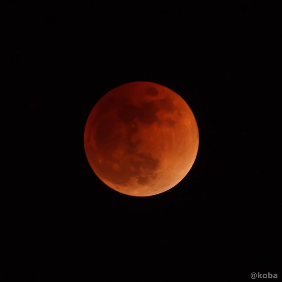 皆既月食│赤銅色の月│千葉県浦安より│こばフォトブログ