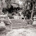 茨城「陰陽神社」陰陽森林公園 森林浴の道