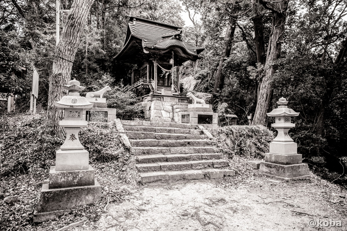 陰陽神社(いんようじんじゃ)│森林浴の道│茨城県常陸大宮市山方│こばフォトブログ