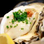 新小岩「濃厚クリーミーな牡蠣♪和食居酒屋」どんきい 魚河岸料理・活魚・ふぐ