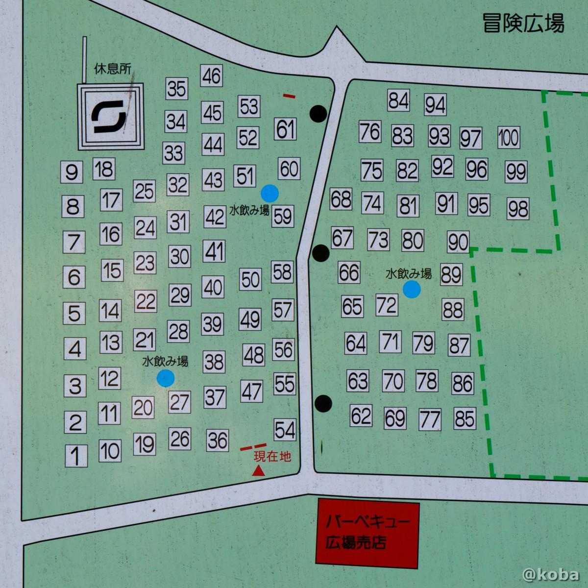 サイト区画 バーベキュー広場 │水元公園│こばフォトブログ@koba