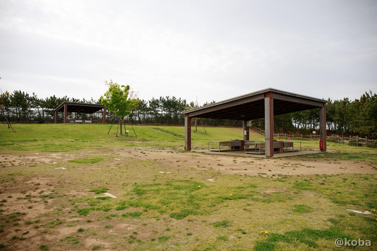 ディキャンプ場の写真(バーベキュー広場)│浦安総合公園│こばフォトブログ@koba