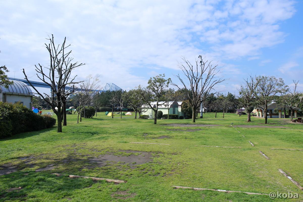 キャンプ場  サイト│若洲公園│江東区