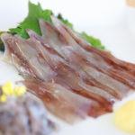 富山県「ほたるいかランチ」パノラマレストラン光彩