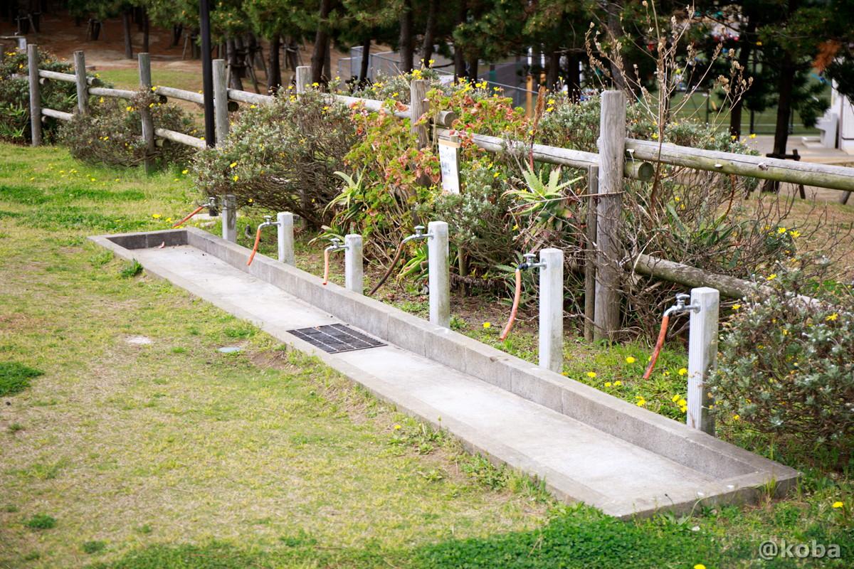 器材洗い場 ディキャンプ場 │浦安総合公園│こばフォトブログ@koba