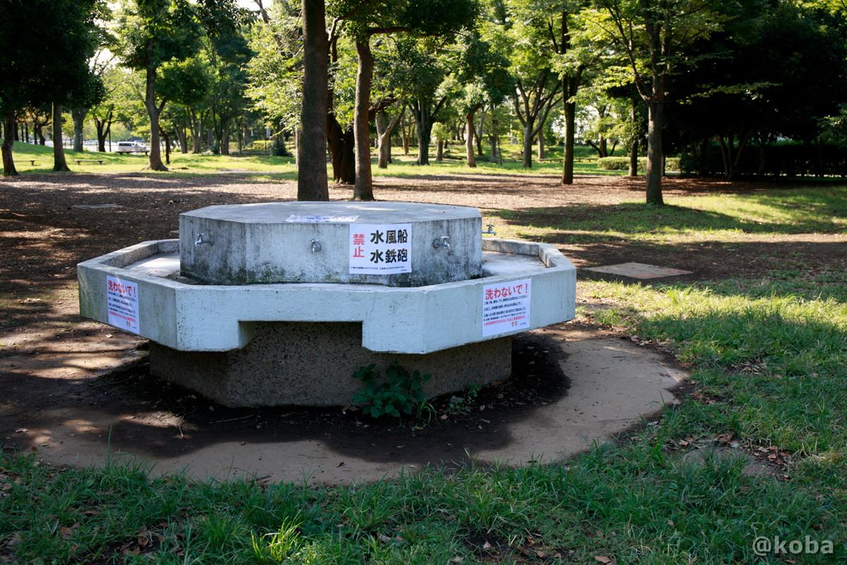 水飲み場② バーベキュー広場 │水元公園│こばフォトブログ@koba