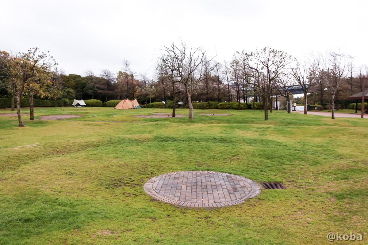 ファイヤーサークル(キャンプファイヤー) キャンプ場 │若洲公園│江東区