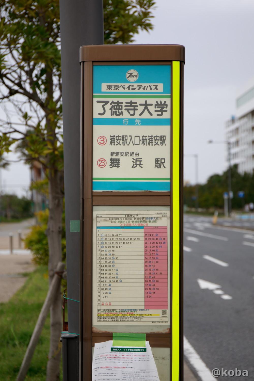 バス停 了徳寺大学│浦安総合公園│こばフォトブログ@koba
