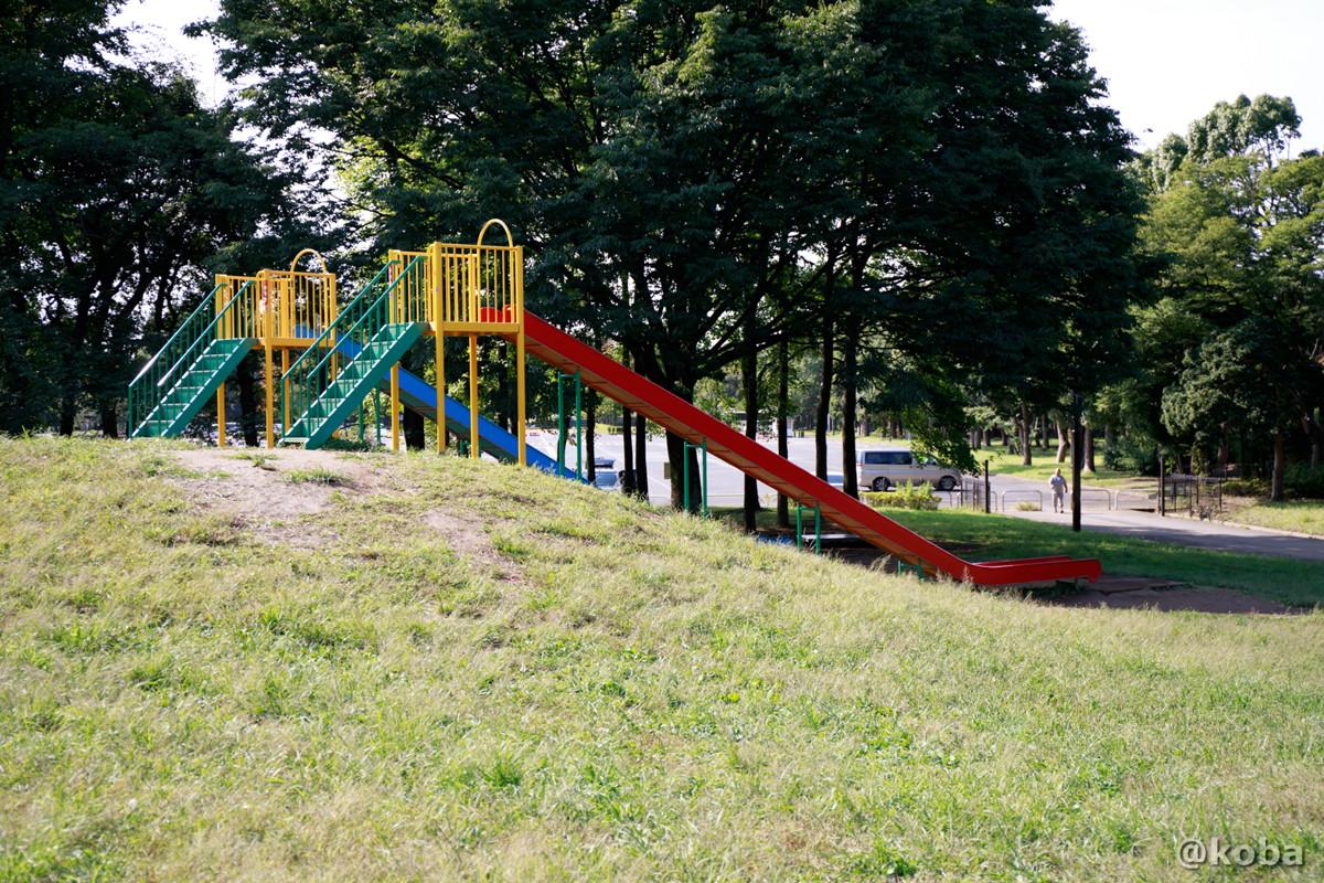 遊具 滑り台 │水元公園・冒険広場│こばフォトブログ@koba