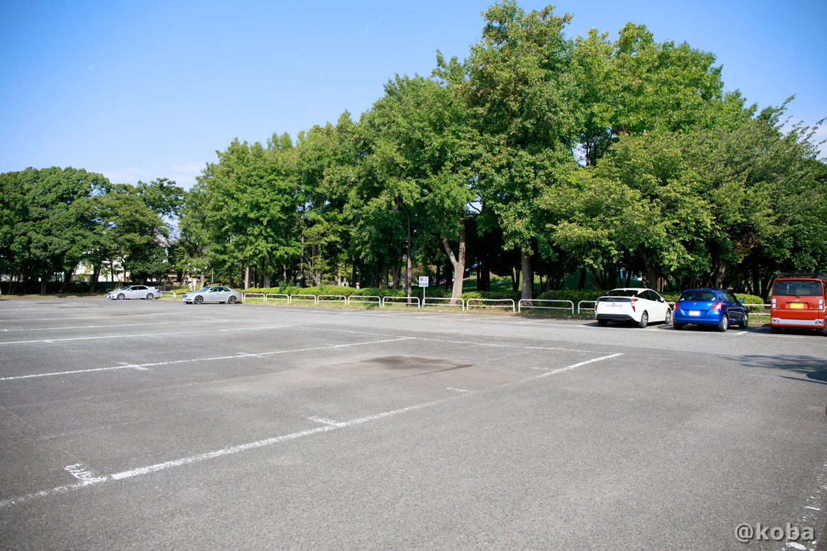 第2駐車場│水元公園│こばフォトブログ@koba