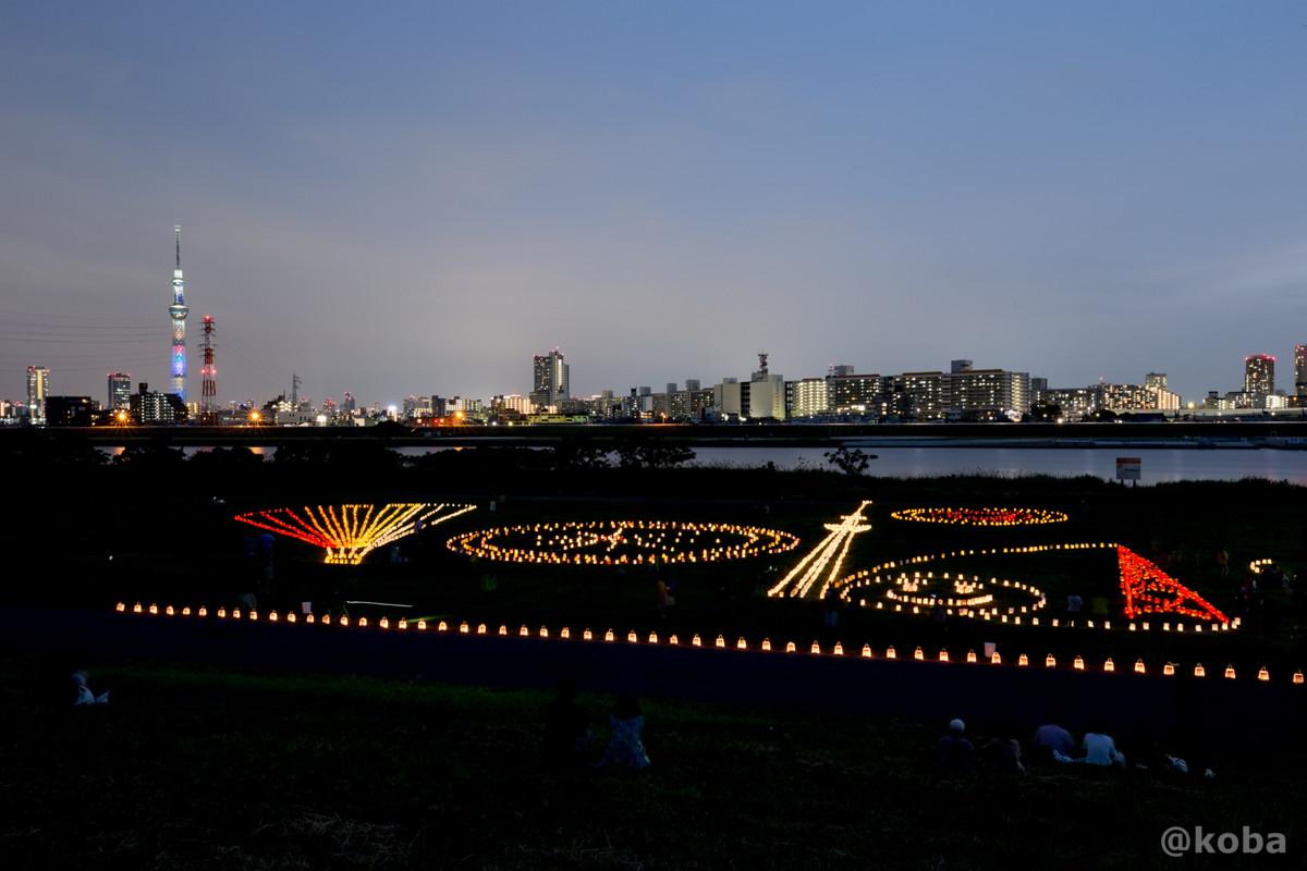 スカイツリー 葛飾灯明 │堀切水辺公園(ほりきりみずべこうえん)