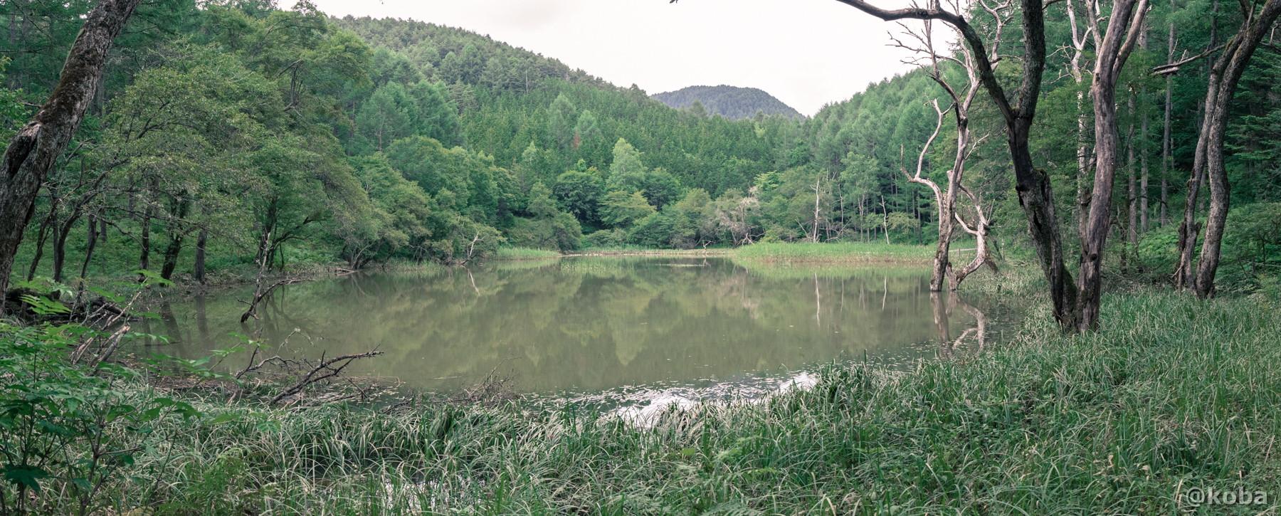 パノラマ画像 panorama 伝説の大池(でんせつのおおいけ) 長野県下伊那郡大鹿村鹿塩