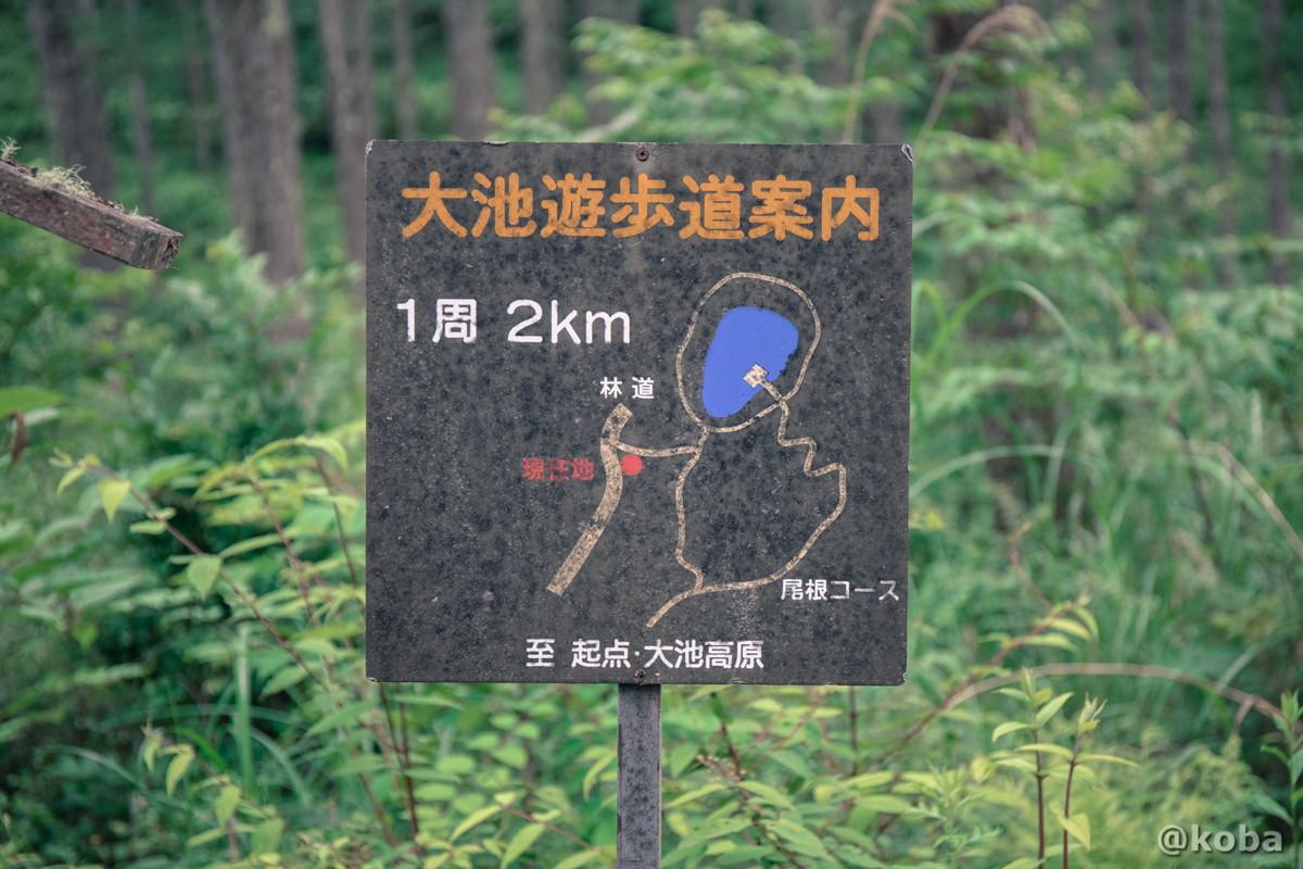 大池遊歩道案内図 一周2km 伝説の大池(でんせつのおおいけ) 長野県下伊那郡大鹿村鹿塩 ブログ画像