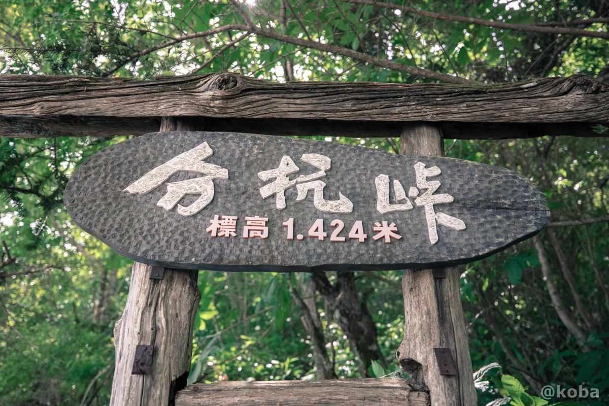 分抗峠 標高1,424m 長野県 伊那市 ぶんこうとうげ ブログ