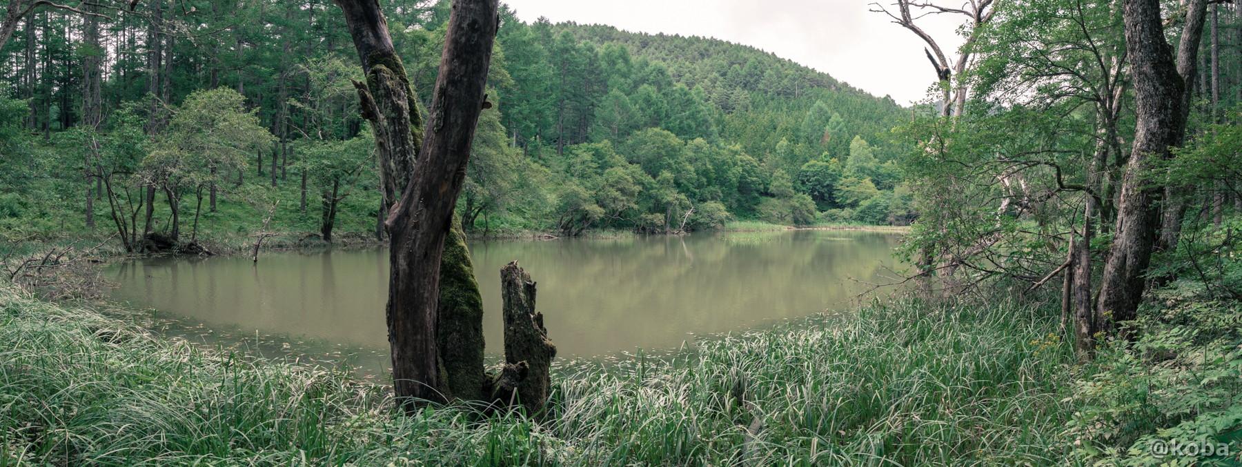 パノラマ写真 panorama 伝説の大池(でんせつのおおいけ) 長野県下伊那郡大鹿村鹿塩 ブログ画像