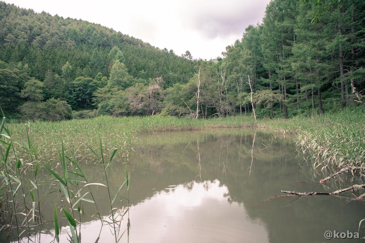 伝説の大池の写真 長野県下伊那郡大鹿村鹿塩 ブログ画像
