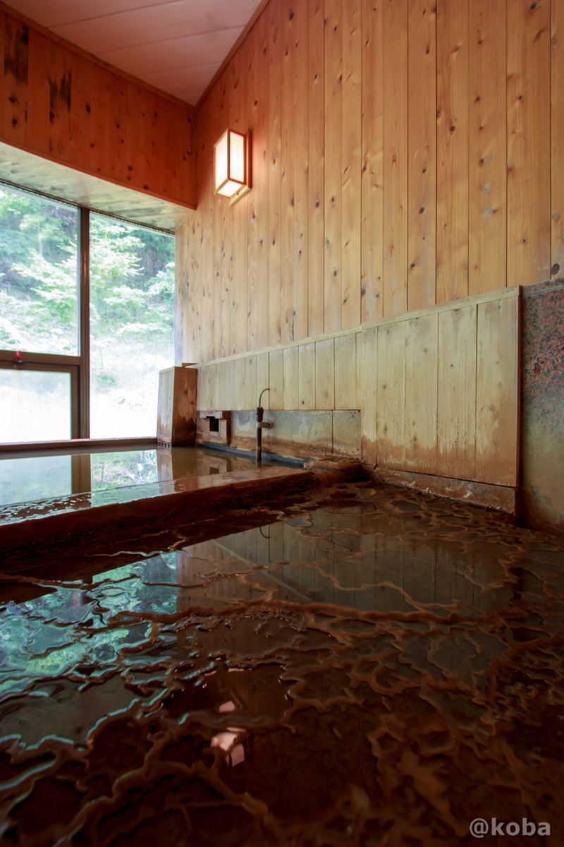 内湯 温泉成分でできた床の模様の写真 温泉成分が析出。泉質 含二酸化炭素-ナトリウム-塩化物・炭酸水素塩冷鉱泉内山峠 初谷温泉(うちやまとうげ しょやおんせん) 長野県佐久市 日本秘湯を守る会