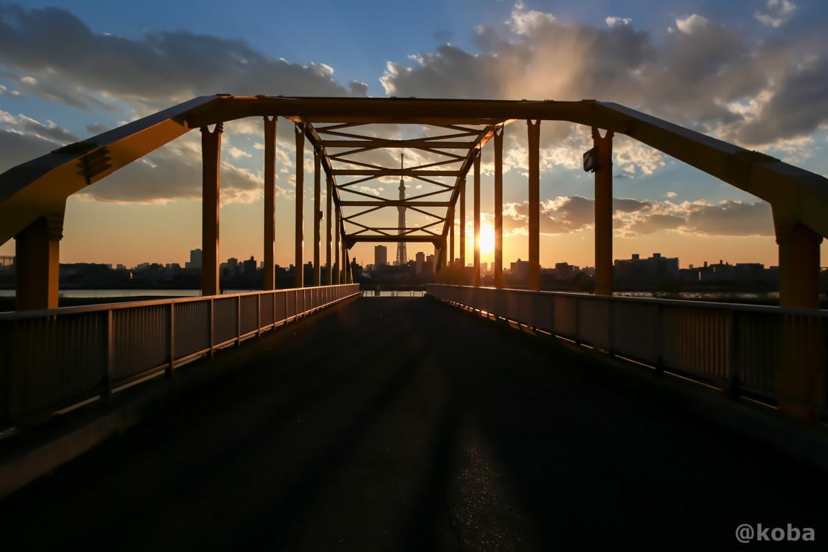 東四つ木非難橋から見たスカイツリー 四つ木 夕方