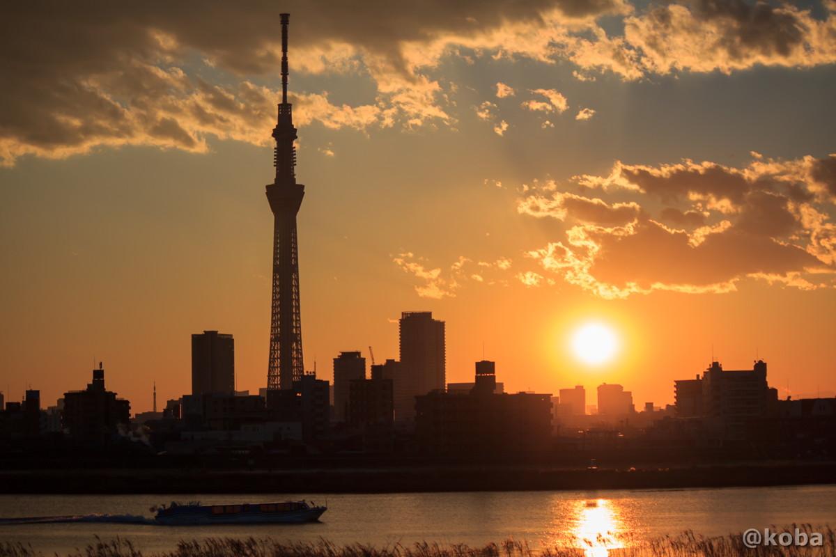 船と東京スカイツリー 夕方