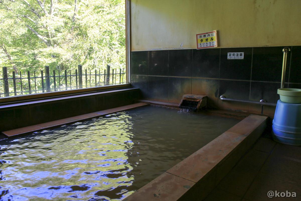 浴室の写真 泉温50.2度の源泉掛け流し 開運の湯(かいうんのゆ)日帰り入浴 栃木 日光 ブログ