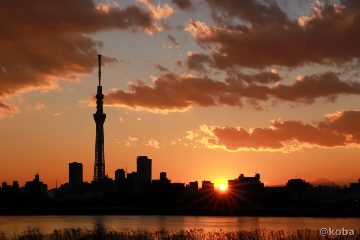 日の入りの写真 四つ木 東京スカイツリー 夕方